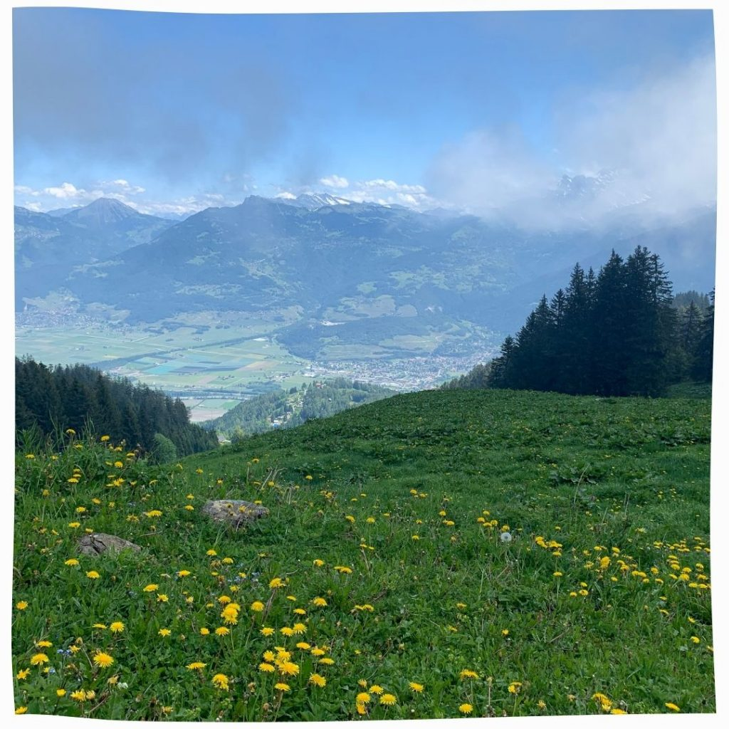 Vallée des Alpes suisses