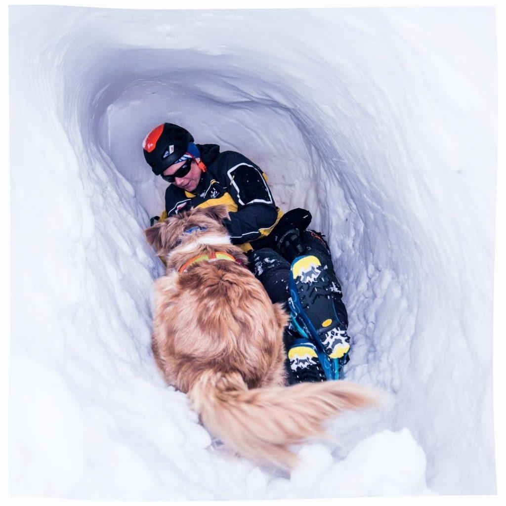 zone d'entraînement pour chiens d'avalanche avec igloos